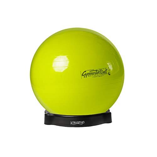 Original Pezzi Pezziball Standard 65 cm m. Ballschale Kombi Gymnastikball lindgr