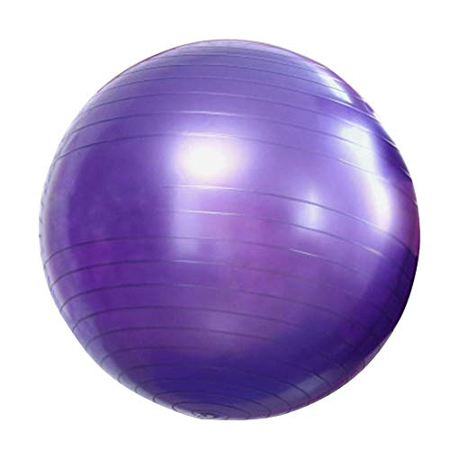 Nicejoy 65cm Gymnastikball, Yoga Ball, Gymnastikball, Fitness Stabilität Anti-Burst-Ball Für...