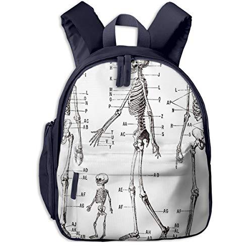 Kinderrucksack Kleinkind Jungen Mädchen Kindergartentasche Anatomie Menschliches Skelett Backpack...