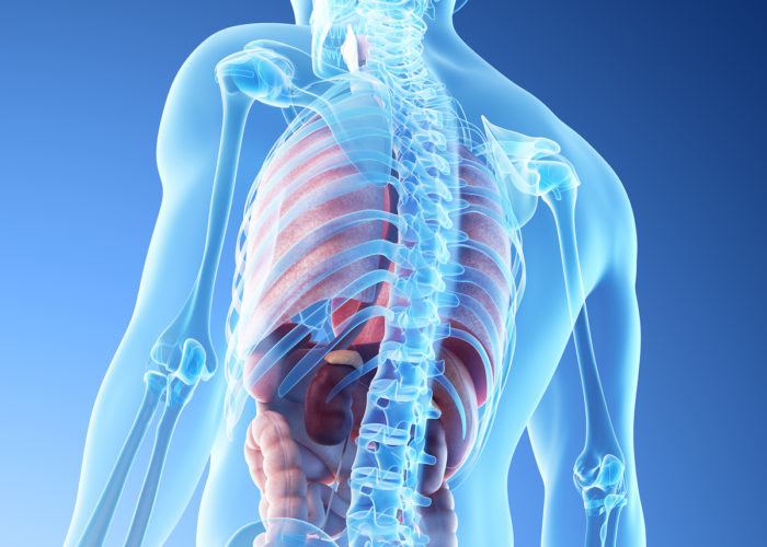 Rechts links bauchspeicheldrüse sitzt oder die wo Bauchspeicheldrüse Schmerzen